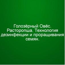 Мини Инфопродукт №1