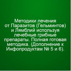 Мини Инфопродукт №14