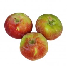 Яблоки молодые органические