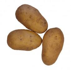 Картофель БИО